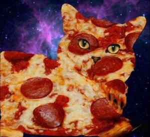 blog pizza cat