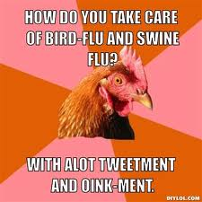 blog bird flu